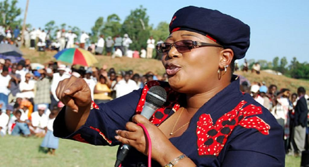 Khupe Denounces Sanctions But Says We Shouldn't Blame Them For Our Errors